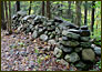 Best Stone Walls -Poindexter Preserve