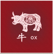 Celebrate the Year of the Ox with AAAYA and YAAMNY